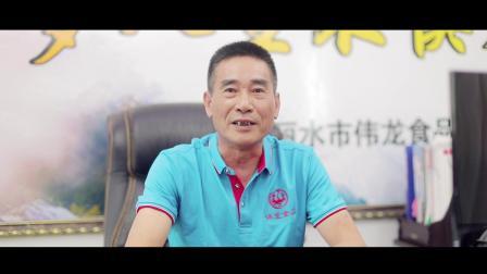 丽水市伟龙食品有限公司宣传片
