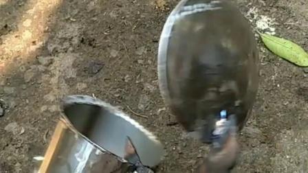 摘酸枣神器