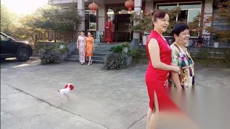 港口陈氏农庄(季勤姐妹们开心六日游时尚模特走秀)2018年9月12日记录