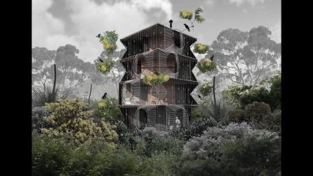 鸟类学家的梦想:一个完全为观鸟而建的家
