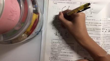 #小洛#我一点也不爱学习🙃
