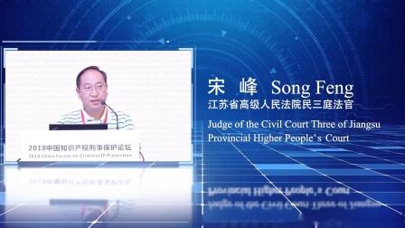 2018中国知识产权刑事保护论坛