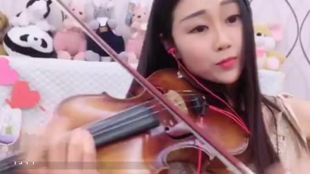 棉花熙小提琴《山茶花》