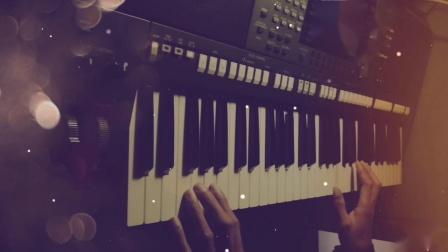 月亮代表我的心 电子琴