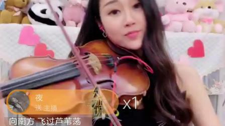 棉花熙小提琴《鸿雁》