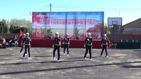 方家镇王家村睦邻阳光舞蹈队《采摘节专辑4》