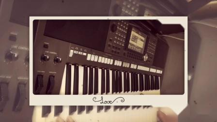九儿 电子琴