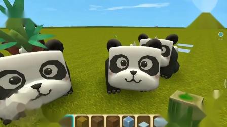 这些熊猫都是大胃王