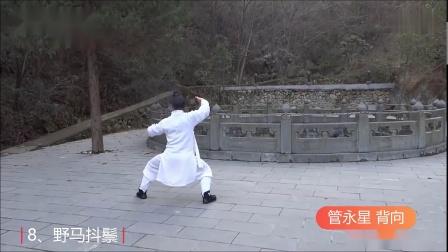 武当玄武拳—管永星背向匀速拳谱_淮西子
