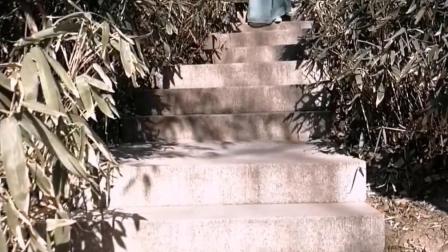 古风花絮1紫竹院