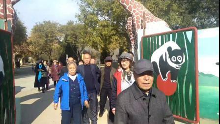 杂技之乡吴桥一日游。