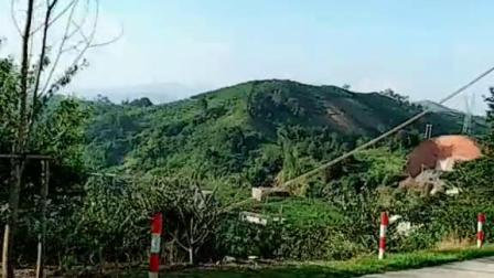 广东信宜一个小山村的风景