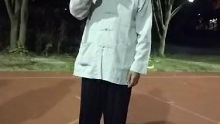 太极拳起式1双脚开立——马成起老师_高清