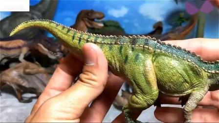 我的儿童恐龙玩具收藏霸王龙棘龙