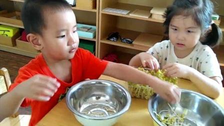 教育即生活-食在蒙台梭利