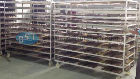 必硕科技——纸浆模塑工业包装生产设备隧道式烘干线