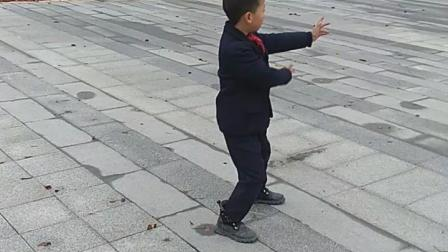 传统杨氏24式太极拳快练