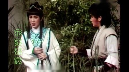 杨丽花歌仔戏虎胆义魄~衣雪对你情似海(新求婚)