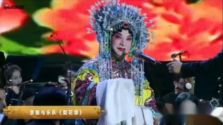 第六届深圳湾音乐会 《盛装民乐》《梨花颂》胡文阁
