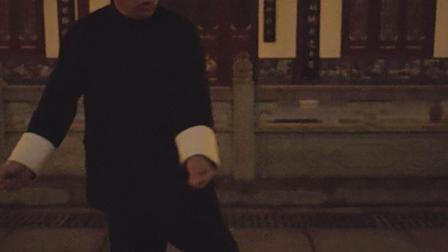 陈氏太极拳精要18式第十三式玉女穿梭