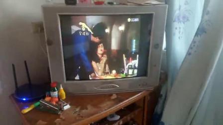 朋友宝仪女神萌萌哒看到了电视台在播放蔡可荔演唱的《星星知我心》