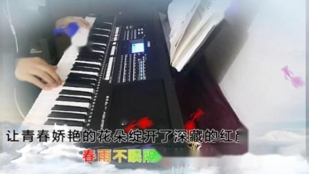 追梦人(电子琴)