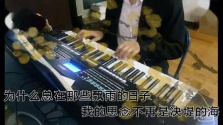 心雨(电子琴)