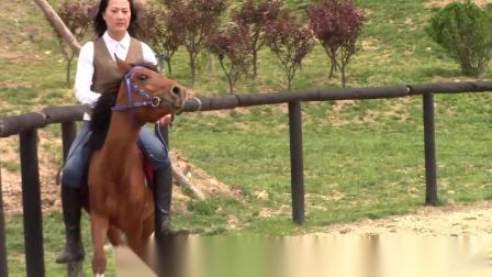 国产骑马33