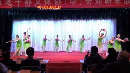 团扇舞《茉莉花》表演 南京市老干部艺术团舞蹈队