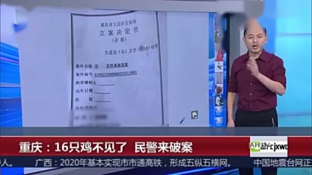 重庆:16只鸡不见了 民警来破案