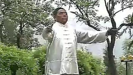 冯志强心意混元内功(全集)_标清