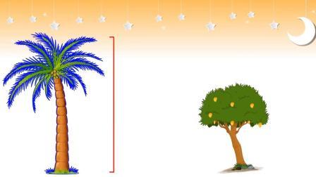 英文棒棒堂  Taller & Shorter  Comparison for Kids