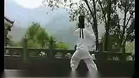 武当太极拳十三式教学(06)扑势_标清
