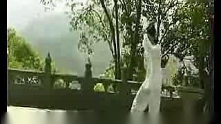 武当太极拳十三式教学(07)担势_标清