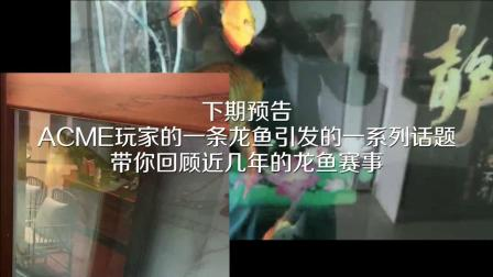 周鱼说鱼 第八期_预告片