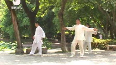 陈氏心意混元太极拳48式马广禄5
