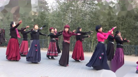 紫竹院相约紫竹广场舞---618-西海情歌