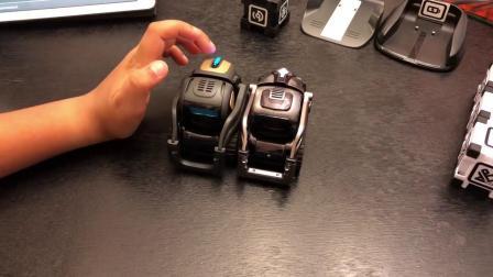 Anki人工智能机器人Vector对比Cozmo