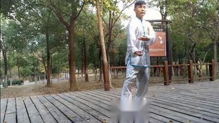 陈瑜弟子彭世松家传太极拳功夫架花絮