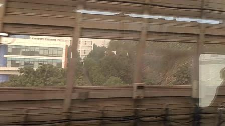 [2019.1]重庆地铁4号线 寸滩-黑石子 运行与报站