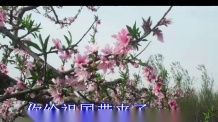 春风圆舞曲--视频伴奏