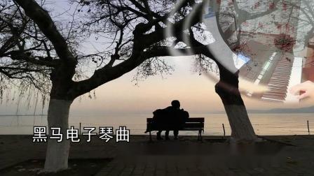 黑马电子琴曲—999朵玫瑰.三江春老师编配指导0