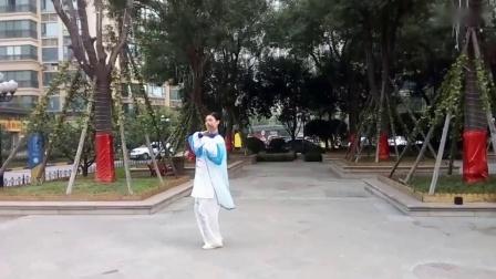 杨丽琴66式综合太极拳(新版)_高清