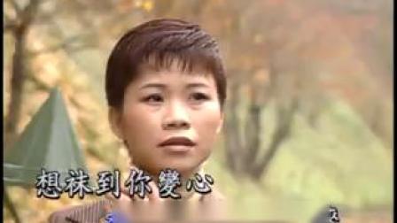詹雅雯-委屈的爱 (KTV版)(标清)