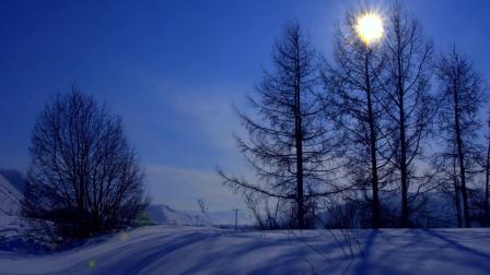 蝶韵芙蓉雪落阿尔山风景素材