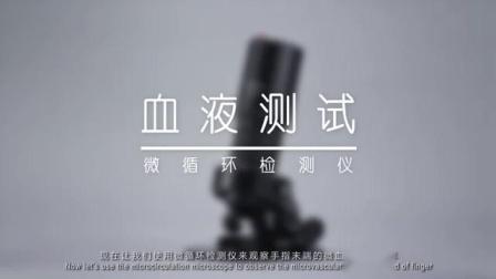 SAVlink PL310 电磁辐射消除器-微血管循环(中文)