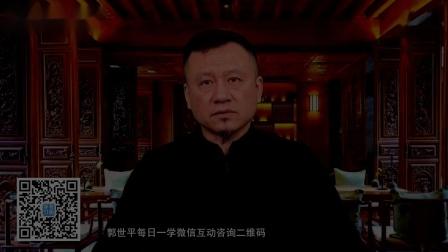郭世平行书技法全集16