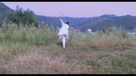 武当飞龙剑2路 武当飞龙剑术
