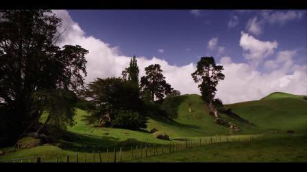 蝶韵芙蓉新西兰风景素材