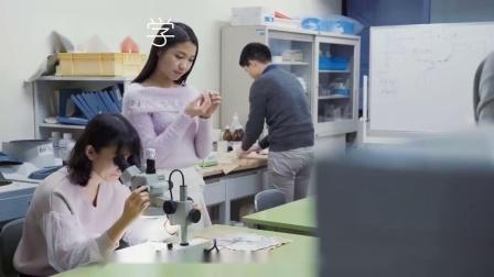 东京工业大学介绍